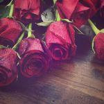 Valentýnská romantika na Zámku